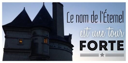 Pont Henri IV, Châtellerault, Église Pentecôtiste, Bible, Proverbes 18:10, abri émotionnel